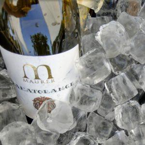 bakatorange_oszkar_maurer_orangewein_naturwein_samovino_wein_aus_serbien
