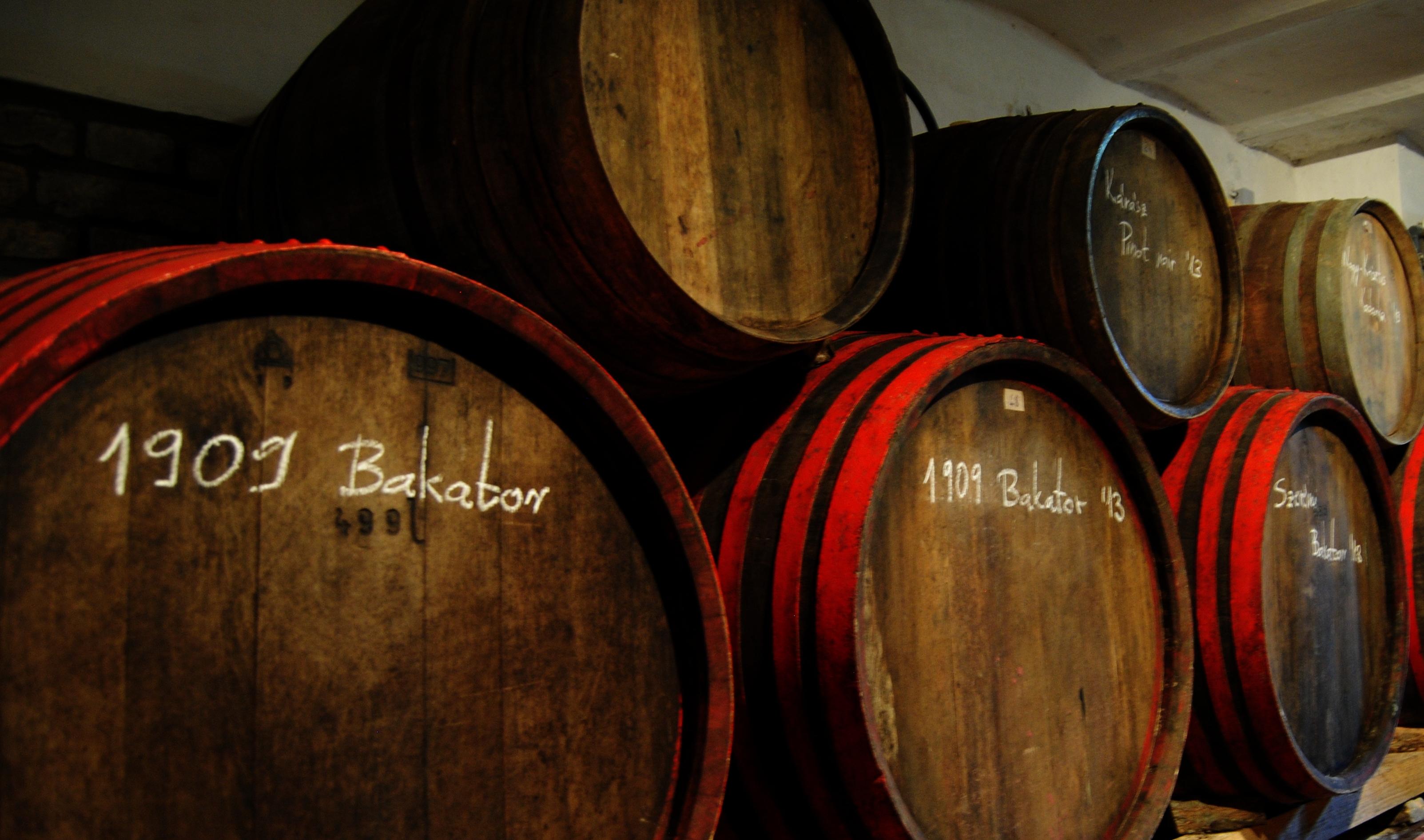maurer_weinfass_bakator_wein_aus_serbien_samovino_naturwein_orangewein